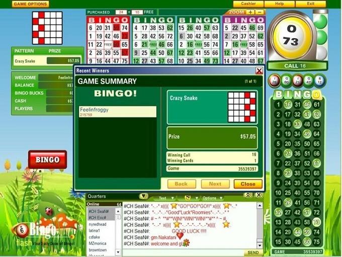 Charming Cite De Jeux Gratuit #2: Jeux-de-bingo-gratuit-sans-inscription2.jpg